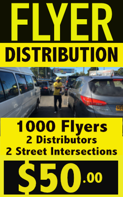 flyer-distribution